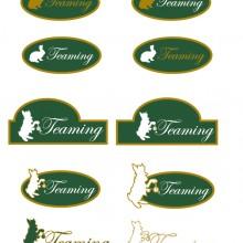 logo teaming