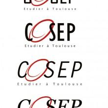 recherche de logo Cosep